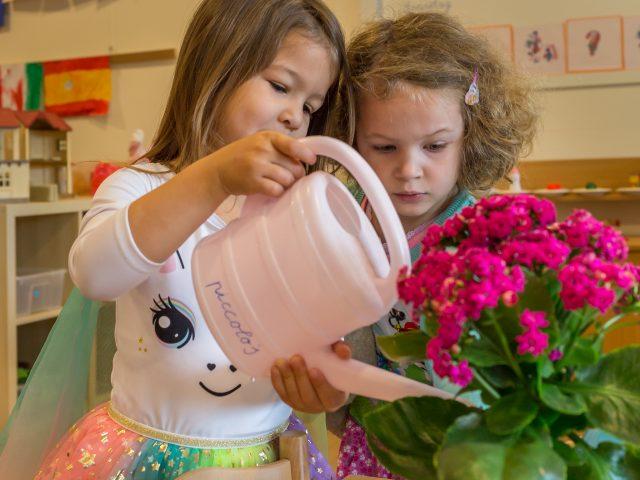 Meisjes geven bloemen water met een gieter